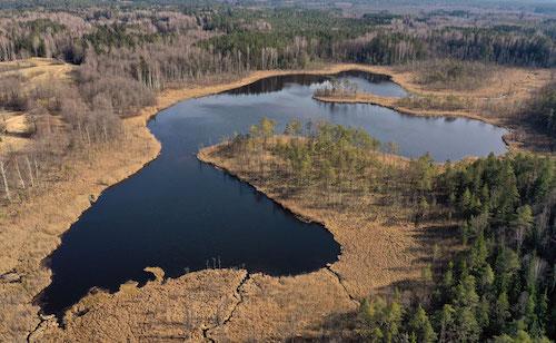 Pliausio ezeras