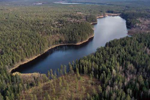 Ziezulnio ezeras